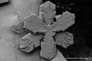 300px-snowflake_300um_ltsem1.jpg